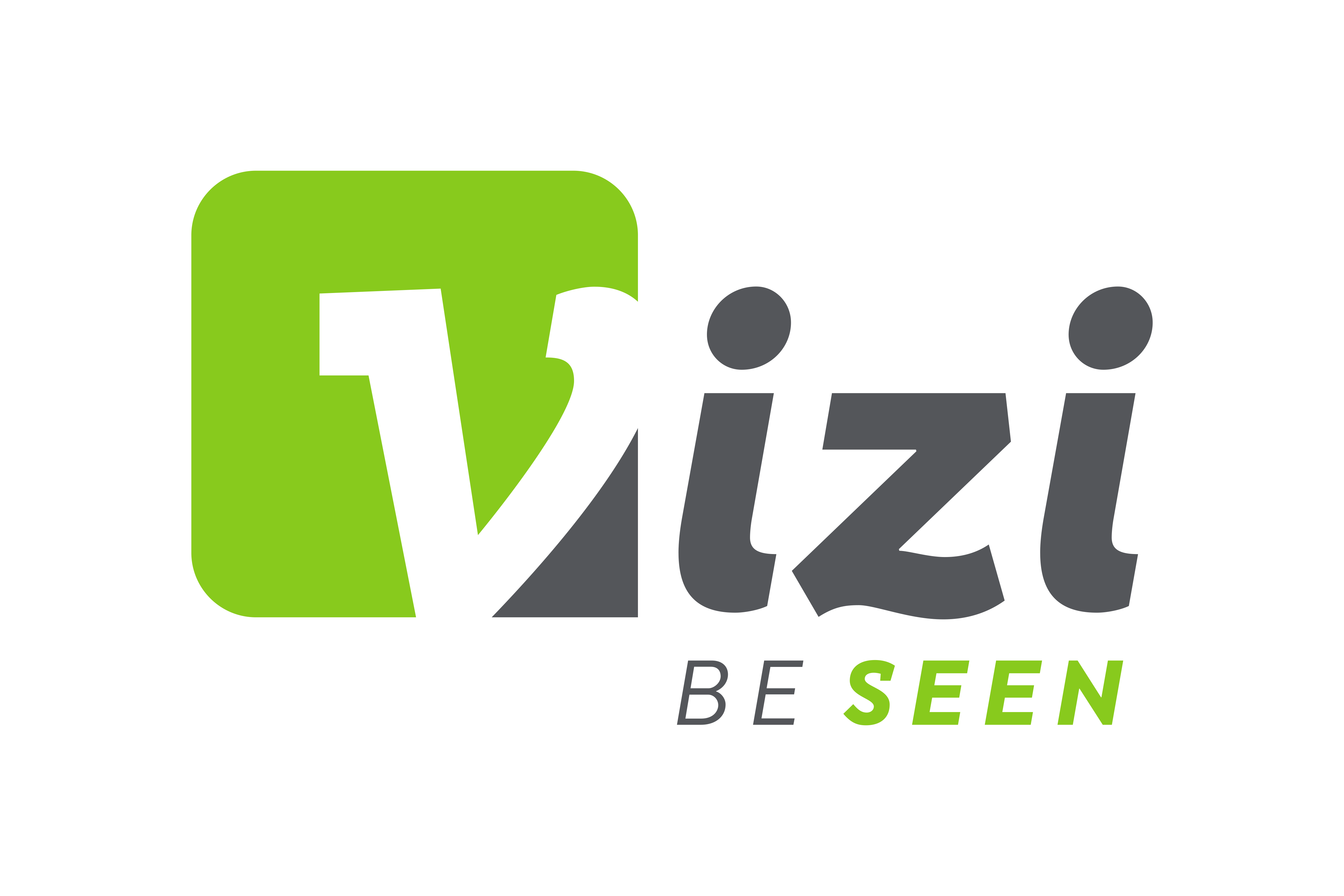 Vizi Logo Final RGB